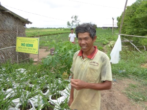 Farmer stands beside his demonstration of ginger production
