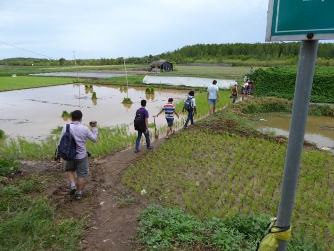 Students visiting the farm