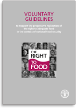 Fundamental but still contentious: Right to Food at theCFS